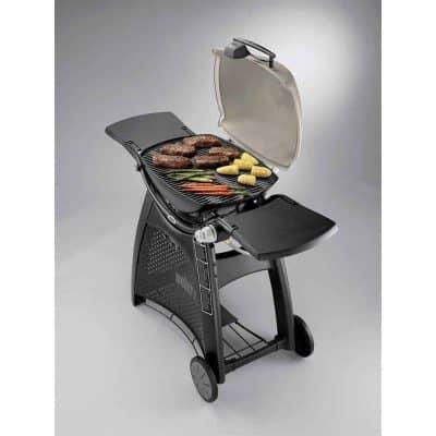 Barbecue Gaz_Weber Q3200