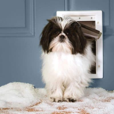 PetSafe Extreme Weather_Chatière